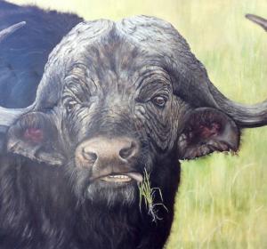 next<span>Büffel</span><i>→</i>