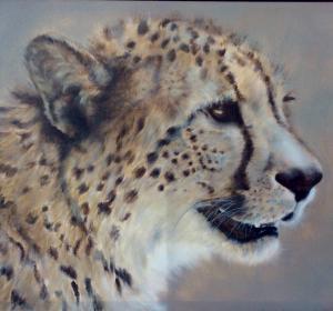 Gepard 2→