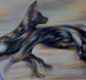 Wildhunde→